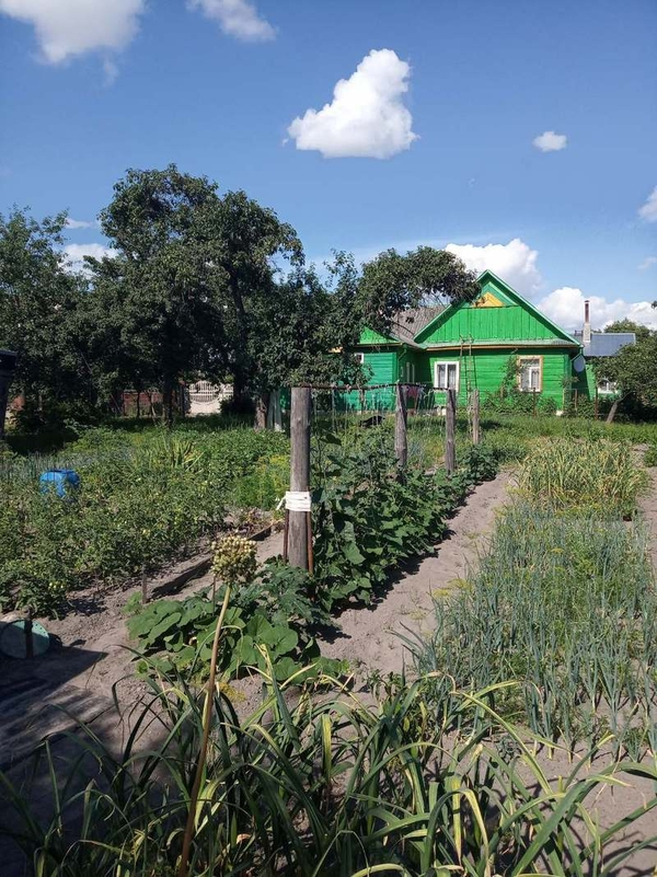 Продам дом с участком,  Пинск,  Заводская,  32 5