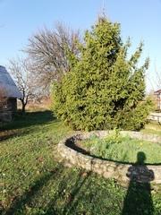 продам дом в деревне Галево